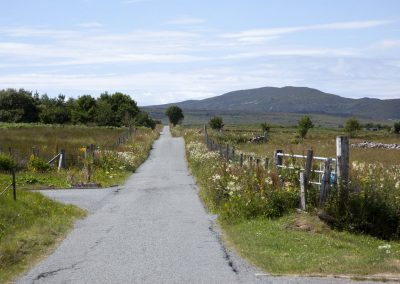 single_track_road_skye